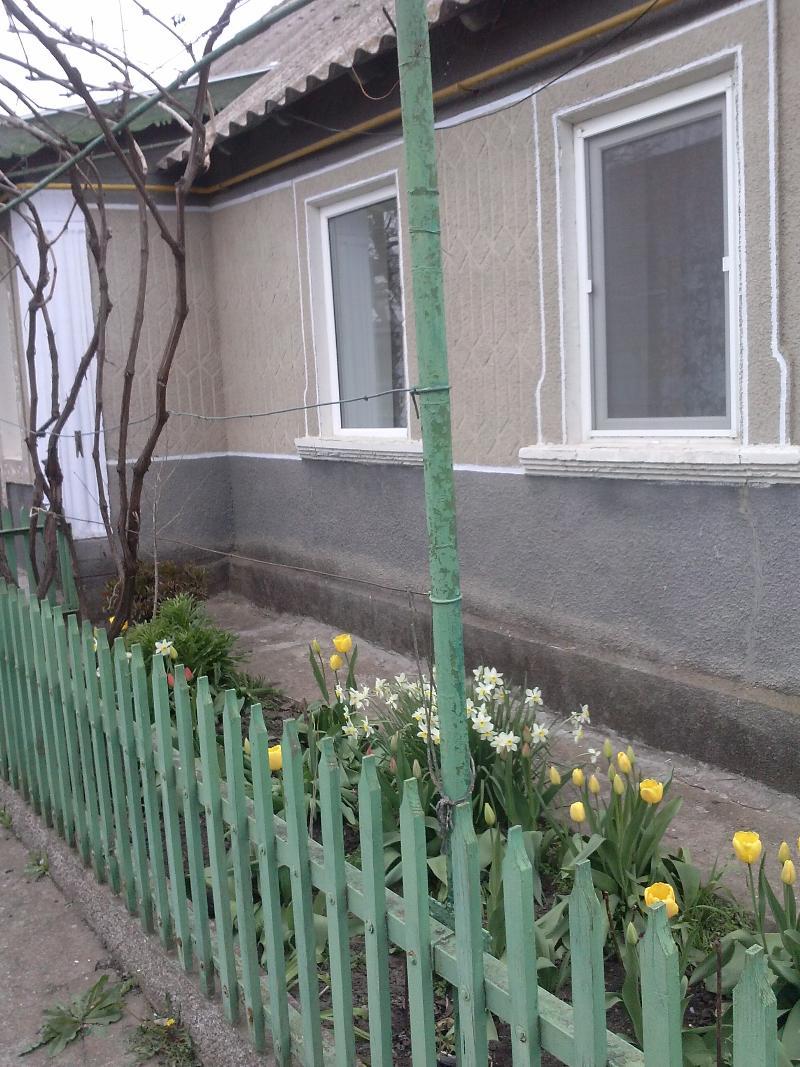 https://photo.capital.com.ua/foto_d/d5503898614.jpg