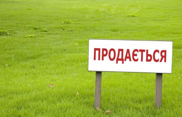 https://photo.capital.com.ua/foto_d/d5507377501.jpg