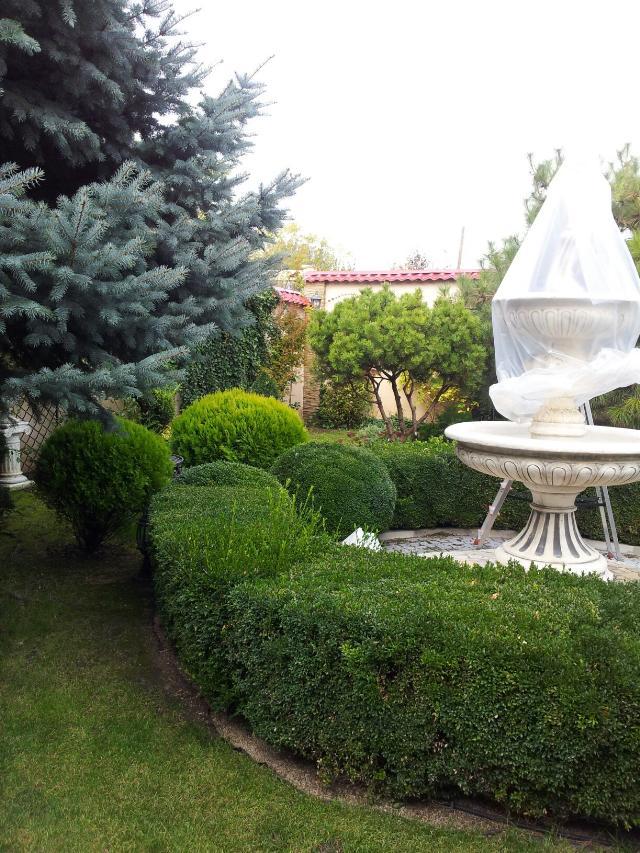 https://photo.capital.com.ua/foto_d/d5508420305.jpg