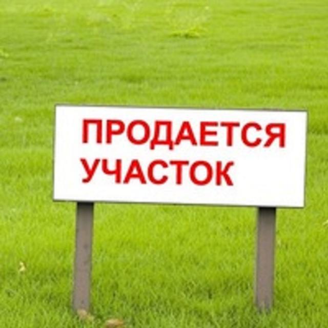 https://photo.capital.com.ua/foto_d/d5508469601.jpg