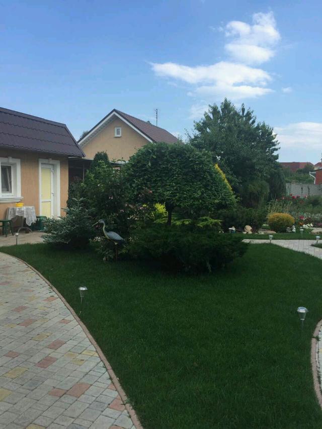 https://photo.capital.com.ua/foto_d/d55111805822.jpg