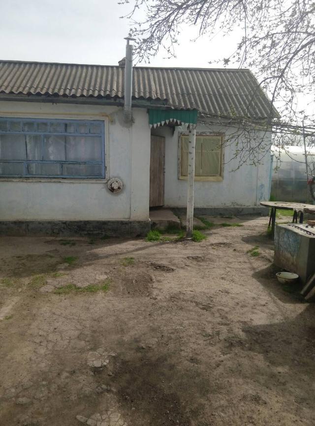 https://photo.capital.com.ua/foto_d/d55111824607.jpg