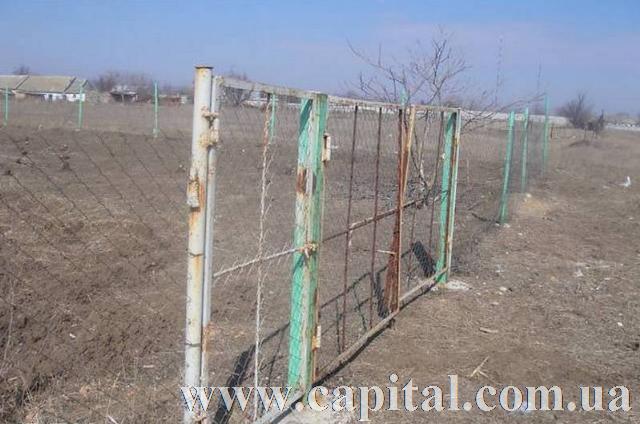 https://photo.capital.com.ua/foto_d/d5511351474502.jpg