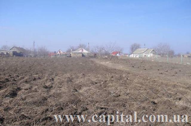 https://photo.capital.com.ua/foto_d/d5511351474504.jpg