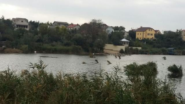 https://photo.capital.com.ua/foto_d/d55151432001.jpg
