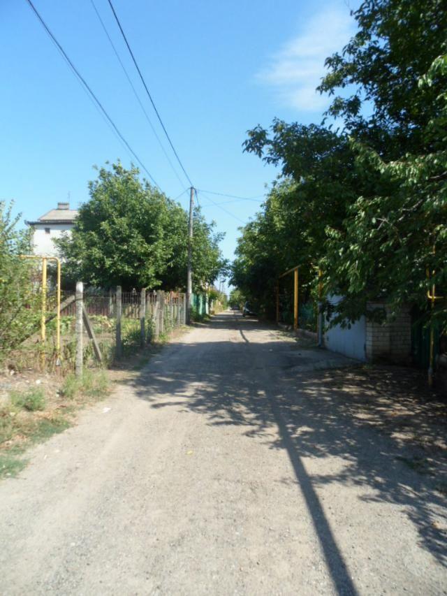https://photo.capital.com.ua/foto_d/d55151446610.jpg