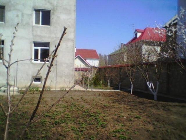 https://photo.capital.com.ua/foto_d/d55151448705.jpg