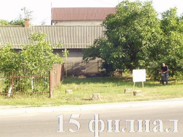 https://photo.capital.com.ua/foto_d/d55151465610.jpg