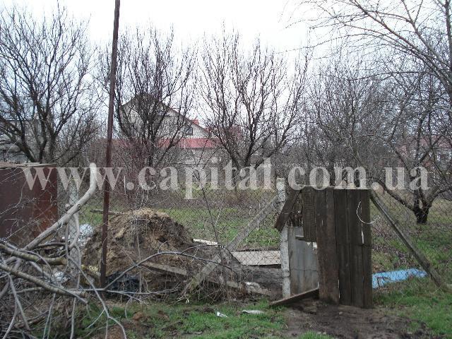 https://photo.capital.com.ua/foto_d/d5519020816707.jpg