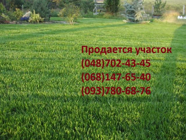 https://photo.capital.com.ua/foto_d/d55191180801.jpg