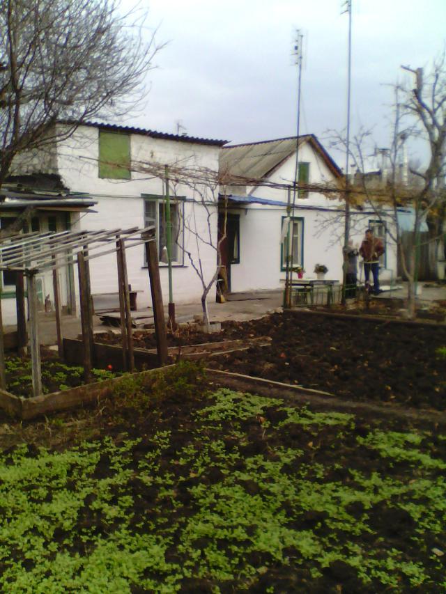 https://photo.capital.com.ua/foto_d/d55191245302.jpg