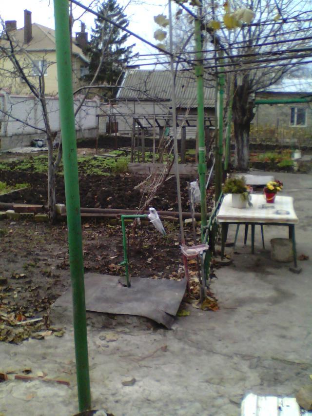 https://photo.capital.com.ua/foto_d/d55191245305.jpg
