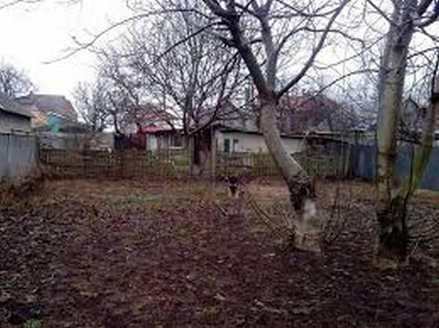 https://photo.capital.com.ua/foto_d/d55191290101.jpg