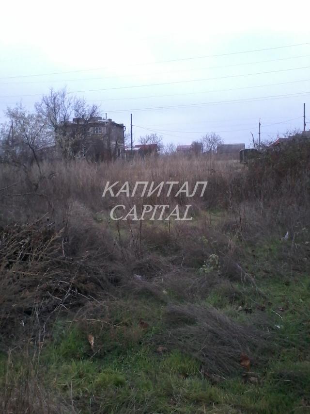 https://photo.capital.com.ua/foto_d/d5520730901.jpg