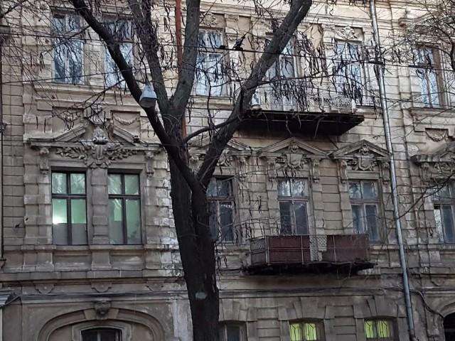 https://photo.capital.com.ua/foto_n/n5506182008.jpg
