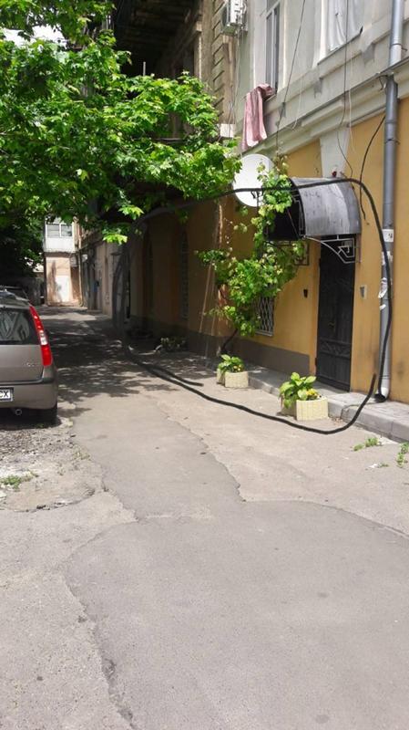 https://photo.capital.com.ua/foto_n/n5515128203.jpg